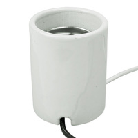 Mogul Base Socket - White Porcelain - 12 in. Lead - No. 14 AWG - 1500 Watt Maximum - 600 Volt Maximum - PLT 48-2610-99