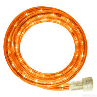 LED - 20 ft. - Rope Light - Amber - 120 Volt - Includes Easy Installation Kit - Clear Tubing with Amber LEDs - Signature LED-13MM-AM-20KIT