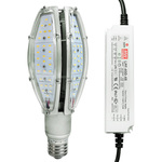 4273 Lumens - 45 Watt - LED Corn Bulb Image