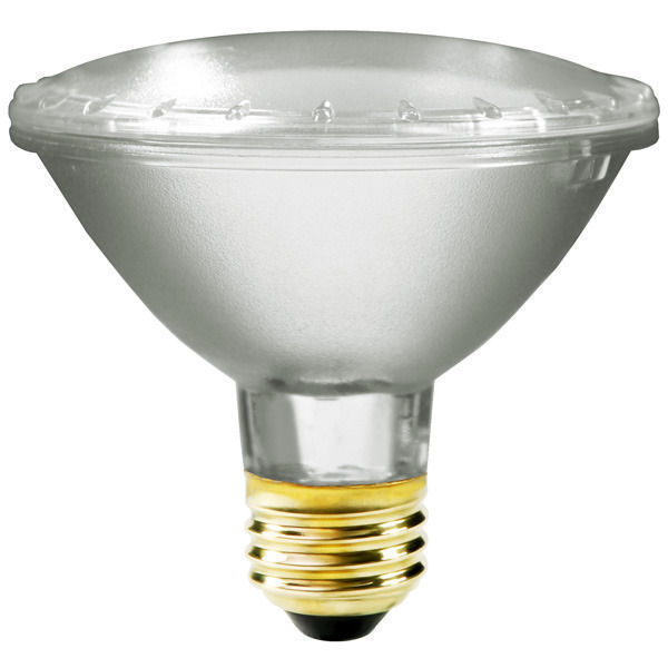 53 Watt - PAR30 - 75 Watt Equivalent - Flood Image