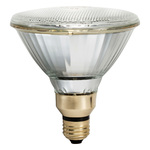 Philips 456467 - 70 Watt - PAR38 - Metal Halide Image