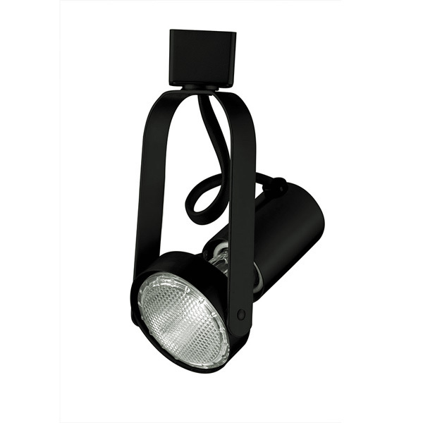 Gimbal Ring Track Fixture - Black Image