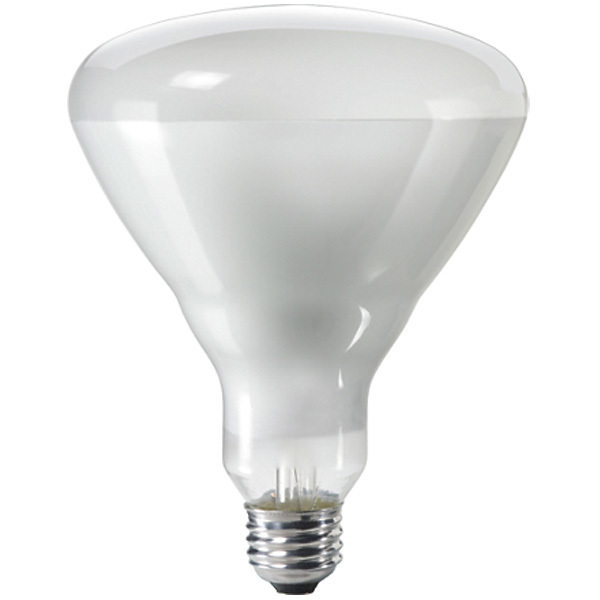 Philips 143438 - 300 Watt - R40 - Incandescent Reflector Image