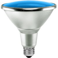 Blue LED - PAR38 - 15 Watt - 90W Equal - 40 Deg. Flood - Wet Location