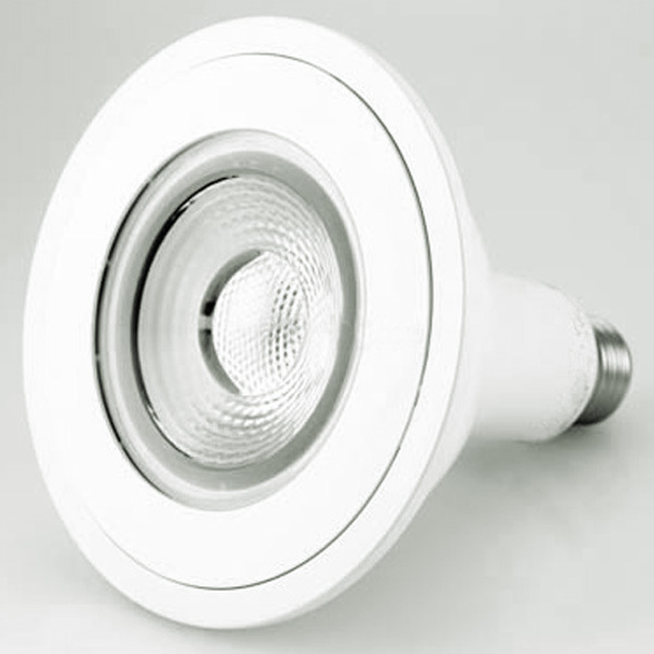LED - PAR38 - 19 Watt - 1200 Lumens Image
