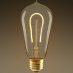 LED Edison Bulb - Vertical Filament - 2 Watt Image
