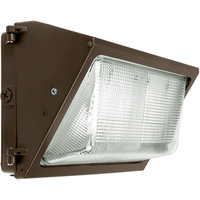 5500 Lumens - LED Wall Pack - 46 Watt - 250W MH Equal - 5000 Kelvin - 120-277V - Fortified LEDs FL/AWM35/50/1.4