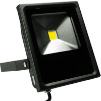 2700 Lumens - Mini LED Flood Light Fixture - Landscape and Wall Washer - 30 Watt - 3000 Kelvin -  Height 9.4 in. - Width 8.2 in. - Depth 2.38 in. - 120-277V - 5 Year Warranty - PLT/S1303
