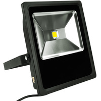 6700 Lumens -  LED Flood Light Fixture - 70 Watt - 5000 Kelvin - Height 15.6 in. - Width 12.6 in. - 120-277V - PLT/S1501