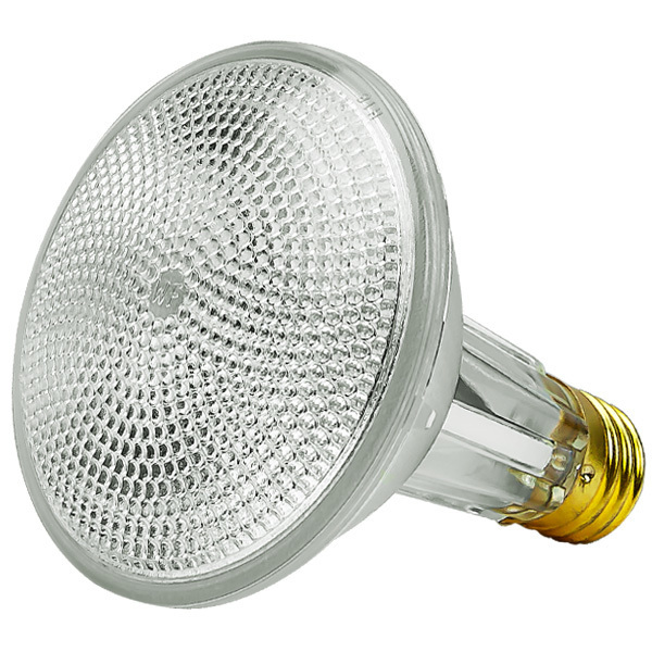 60 Watt - PAR30LN - 75 Watt Equivalent - Flood Image