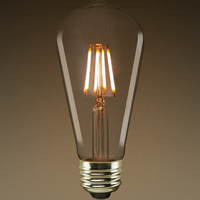 LED Edison Bulb - Clear - 4.9 Watt - 40W Equal - 450 Lumens - 2700 Kelvin - CRI 80 - Euri Lighting VST19-2000