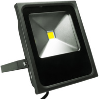 5300 Lumens - LED Flood Light Fixture - 50 Watt - 4000 Kelvin - Height 11.63 in. - Width 9.78 in. - Depth 2.65 in. - 120-277V - 5 Year Warranty - PLT/S1402