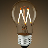 LED Victorian Bulb - Vertical Filament - 5 Watt - 450 Lumens - 40 Watt Equal - 2700 Kelvin Warm White - Clear