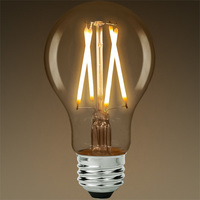 LED Victorian Bulb - Vertical Filament - 7 Watt - 800 Lumens - 60 Watt Equal - 2700 Kelvin - Clear Glass - Dimmable
