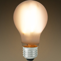 LED Victorian Bulb - Vertical Filament - 7 Watt - 800 Lumens - 60 Watt Equal - 2700 Kelvin - Frosted Glass