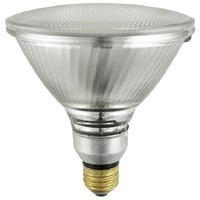 250 Watt - PAR38 - Flood - Halogen - 5,000 Life Hours - 3,750 Lumens - 120 Volt