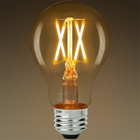 LED Victorian Bulb - Vertical Filament - 5 Watt - 450 Lumens - 40 Watt Equal - 2700 Kelvin Warm White - Clear - Dimmable