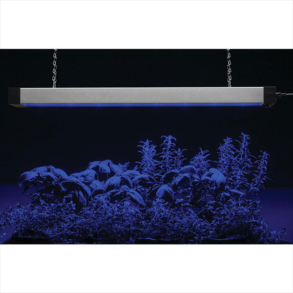 Lithonia GRWL 24IN 40K 80CRI SLV M4 - LED Grow Light Fixture Image