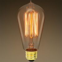 60 Watt - Edison Bulb - 5.13 in. Length - Vintage Light Bulb - Squirrel Cage Filament - Amber Tinted - PLT 607167