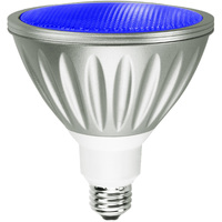 Blue LED - PAR38 - 9 Watt - 30W Equal - 35 Deg. Flood - Wet Location