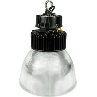 13,000 Lumens - LED High Bay - 5000 Kelvin - Height 16.5 in. x Diameter 12.2 in. Clear Prismatic Reflector - 120-277V - PLTE6112