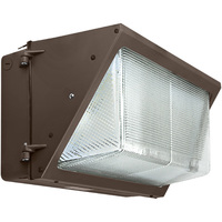 12,800 Lumens - 4000 Kelvin - 100 Watt - LED Wall Pack - 25% Brighter than 400W MH and Uses 75% Less Energy - 120-277V - PLT-11193