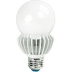 2000 Lumens - High Output LED - A21 Shape Image