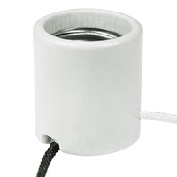 Medium Base HID Socket - 4000kV Pulse Rating - 9 in. Lead - No. 18 AWG - 600 Watt Maximum - 600 Volt Maximum - PLT 40-2608-99