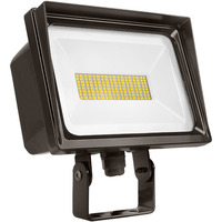 6750 Lumens - LED Flood Light Fixture - 4000 Kelvin - 66 Watt - Replaces a 250 Watt Metal Halide - 120 Volt - Trunion Mount - Lithonia QTE
