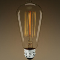 30 Watt - Edison Bulb - 5.3 in. Length - Vintage Light Bulb - Squirrel Cage Filament - Amber Tint