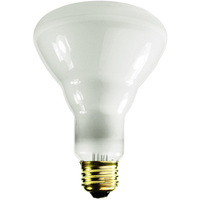 65 Watt - BR30 Incandescent Light Bulb - Frosted - Medium Brass Base - 120 Volt - Satco S2808
