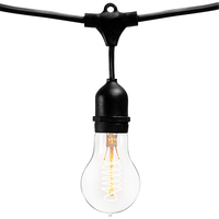 14 ft. - Patio Light Stringer - 10 Sockets - 16 in. Spacing - Black Wire - Male to Female - Connectable up to 3 Strands - Incandescent A19 Vintage Bulbs Included