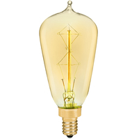 Edison Bulb - 25 Watt - 3.4 in. Height - Vintage Light Bulb - Amber Tint - PLT ST38