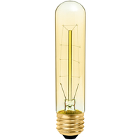 20 Watt - Vintage Antique Light Bulb - T10 Tubular Style - 5.5 in. Height - Medium Base - Hairpin Filament - Tinted