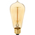 Edison Bulb - 60 Watt - 5.4 in. Height Thumbnail