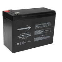 12 Volt - 10Ah - AGM Battery - F2 Terminal - Sealed AGM - Bright Way Group BW12100F2
