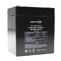 12 Volt - 5Ah - AGM Battery - F1 Terminal - Sealed AGM - Bright Way Group BW1250F1