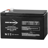 12 Volt - 7 Ah - AGM Battery - F1 Terminal - Sealed AGM - Bright Way Group BW1270F1