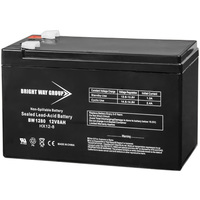 12 Volt - 8 Ah - AGM Battery - F1 Terminal - Sealed AGM - Bright Way Group BW1280F1